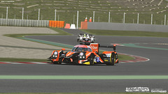 Endurance Series rF2 - build 3.00 released 29100350986_6c4c42ce32_m
