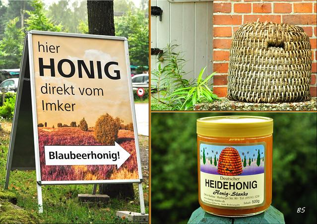 Lüneburger Heide - Undeloh - Heidekraut - Heidekrauttee - Heidehonig - Lüneburger Stülper - Heidschnucken - Karla Kunstwadl - Fotos und Collagen: Brigitte Stolle September 2016