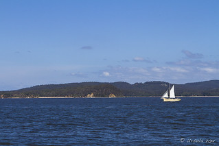 25 Sailboat Twofold Bay | by Ursula in Aus