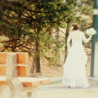 Bench Monday - Bride Edition | by Grapefruit Moon (Barb)
