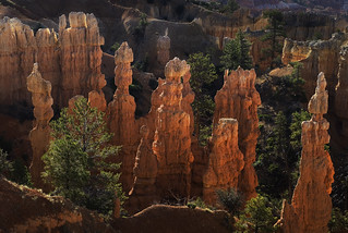 bryce canyon 3 ____day 11 | by trying to catch up again !!!