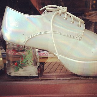 Omg fish tank shoes caestus flickr for Fish tank shoes