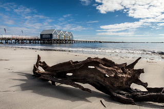 Busselton Jetty with Driftwood | by collectionselements