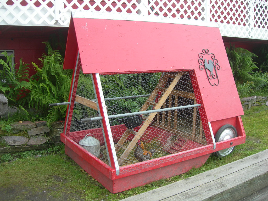 A portable chicken coop it was located outside of a gift for Portable coop