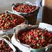 Crates of Strawberries in La Trinidad, Benguet