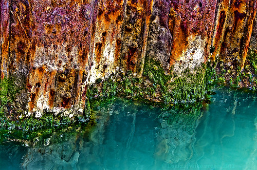 The colours of decay! | by DWImages-Daniela White