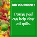 Did You Know - Durian