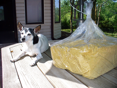 2012-06-14 - 15lbs of nooch - 0008 | by smiteme
