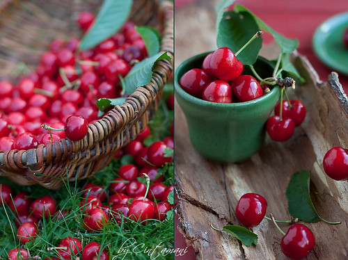 Collecting Cherries. | by Cintamani, GreenMorning.pl