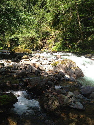 Skate Creek | by Nisqually River Council