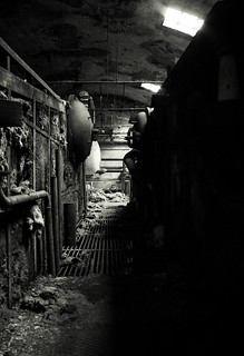 Old factory | by Fatricki