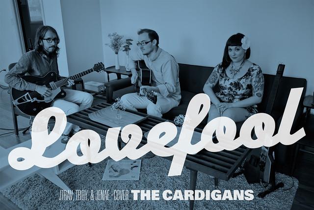 The Cardigans Lovefool Album 45 - The Cardigans Lovefool Album - Gray Cardigan Sweater