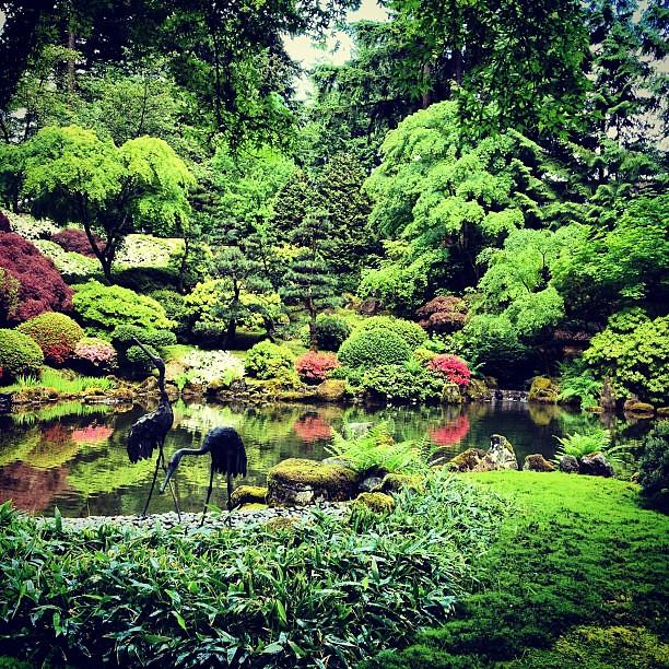 Koi Pond At Portland Japanese Garden Leslie Y Flickr