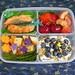 TinySprite's Salmon and Goodies Preschool Bento