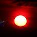 Tránsito de Venus entre el Sol y la Tierra <in Explore> #64