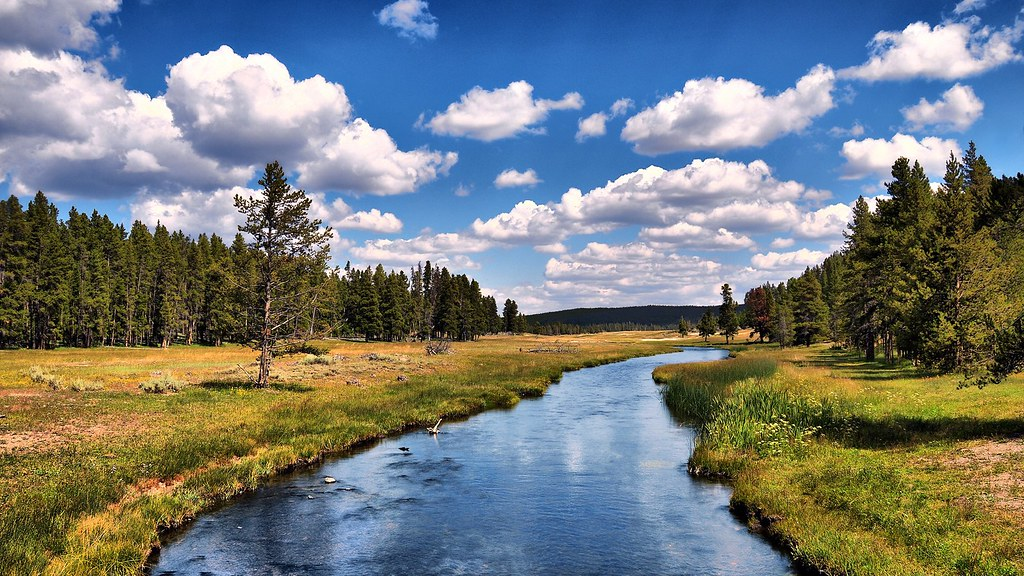 ... Grizzly River by Dominic Kamp | by ojwm
