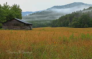 Essence of Cataloochee Valley  28/52 | by Danny Buxton