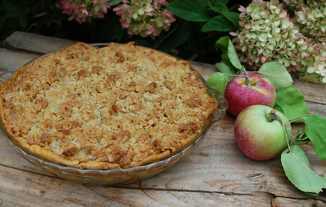 Apple Crisp Apple Pie 1