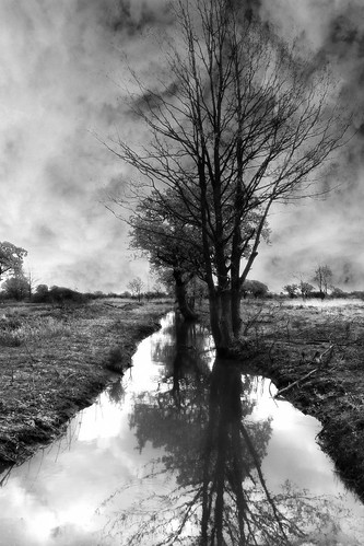 The ditch 2.. | by Jem Salmon