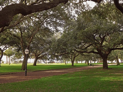 Waterfront Park in Charleston, SC | by Susan Roehl