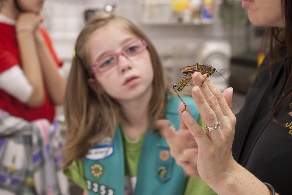 Houston Museum Of Natural Science Girl Scouts