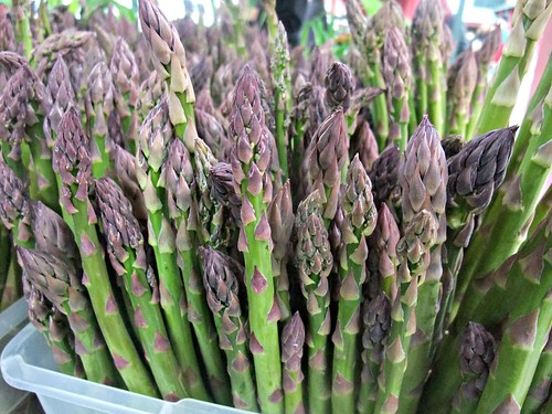 Asparagus | by swampkitty