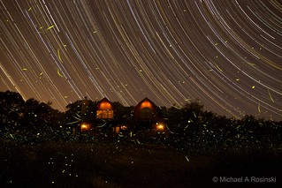 6-20-2012 starttrail-fireflies Mike Rosinski | by mtbdudex
