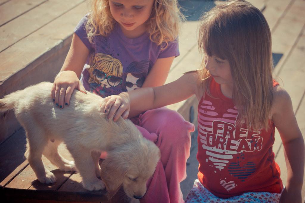 Little Girls Best Friends Little Girls 39 Best Friend