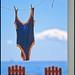 "204/366 THE WORLD--Cape Cod, Massachusetts  ""Awaiting the next swim"""