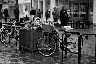 Bikes In The Rain | by neonbubble