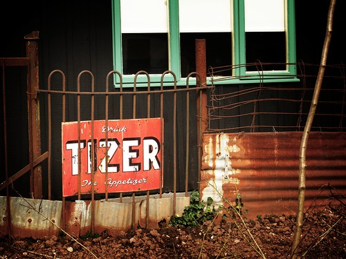 Tizer | by Viv Lynch