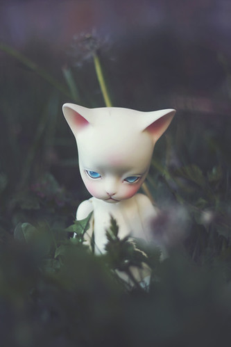garden kitty | by c a r o l i n e*