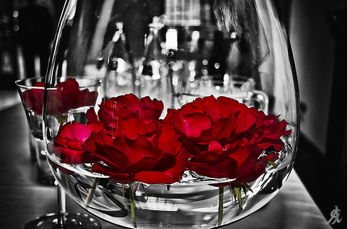 Flowers into the water | by Alessandro Giorgi Art Photography