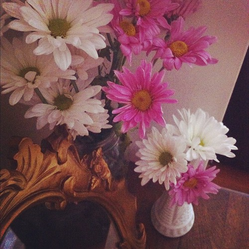 This week's blooms: DAISIES (living room side table and milk vases) #forabeautifullife #thrifted  #blooms #flowers #prettythings | by christadavid
