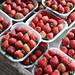 Packed Strawberries in La Trinidad, Benguet