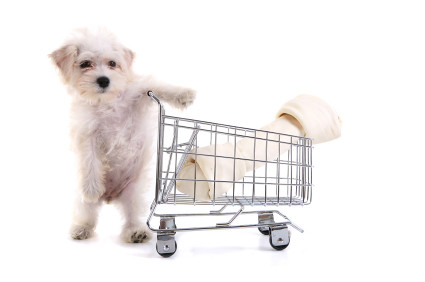 dog-shopping | by Blog dos Bichos