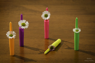 Flowers in Pen Lids | by Handy Andy Pandy
