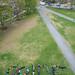 PRIDE on the Dartmouth Green