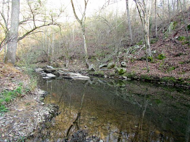 Botanical Gardens Trails Chapel Hill 6262 Flickr Photo Sharing