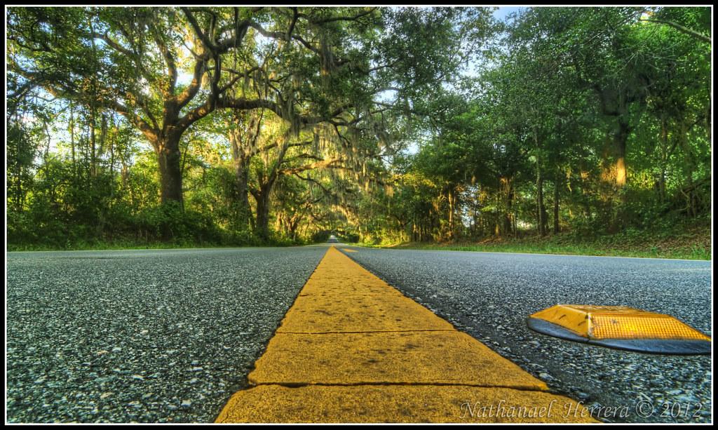 Canopy Road | by Nathanael Herrera Canopy Road | by Nathanael Herrera  sc 1 st  Flickr & Canopy Road | One of many of Tallahasseeu0027s Canopy roads. Cenu2026 | Flickr