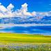 Sayram Lake (Panorama)