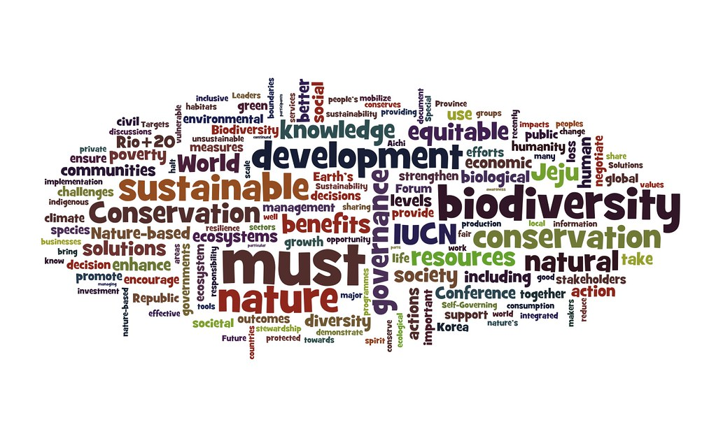 Wordled Jeju Declaration From The September 2012 Iucncong