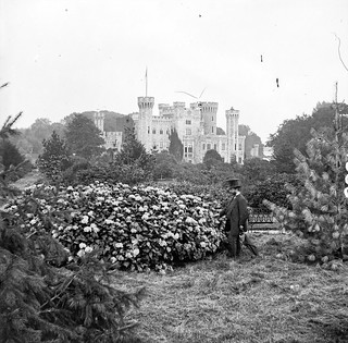 """Mock Gothic Castle in parkland"" = Johnstown Castle, Wexford! 