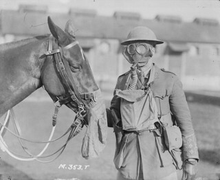 Soldier and horse at Canadian Army Veterinary Corps Headquarters / Un soldat et son cheval au quartier général du Corps de vétérinaires de l'armée canadienne | by BiblioArchives / LibraryArchives
