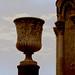 The vase of Pisa