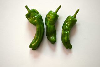 Mellow Star Shishito Peppers | by Brooklyn Botanic Garden