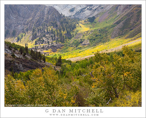 Early Fall Color, McGee Canyon | by G Dan Mitchell