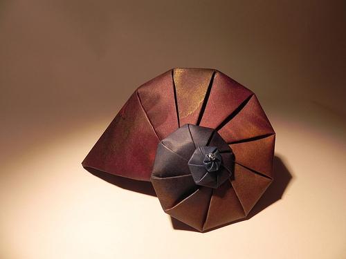 Origami Nautilus Created By Hilli Zenz Flickrstream