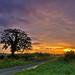 Rural sunrise.