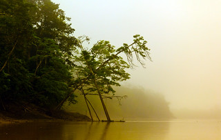 fog on kinabatangan river | by www.infografiagijon.es